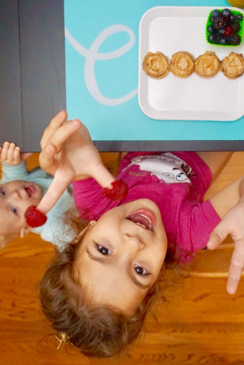 Binkie Bites: Organic Chocolate Protein Shake with HiddenVeggies